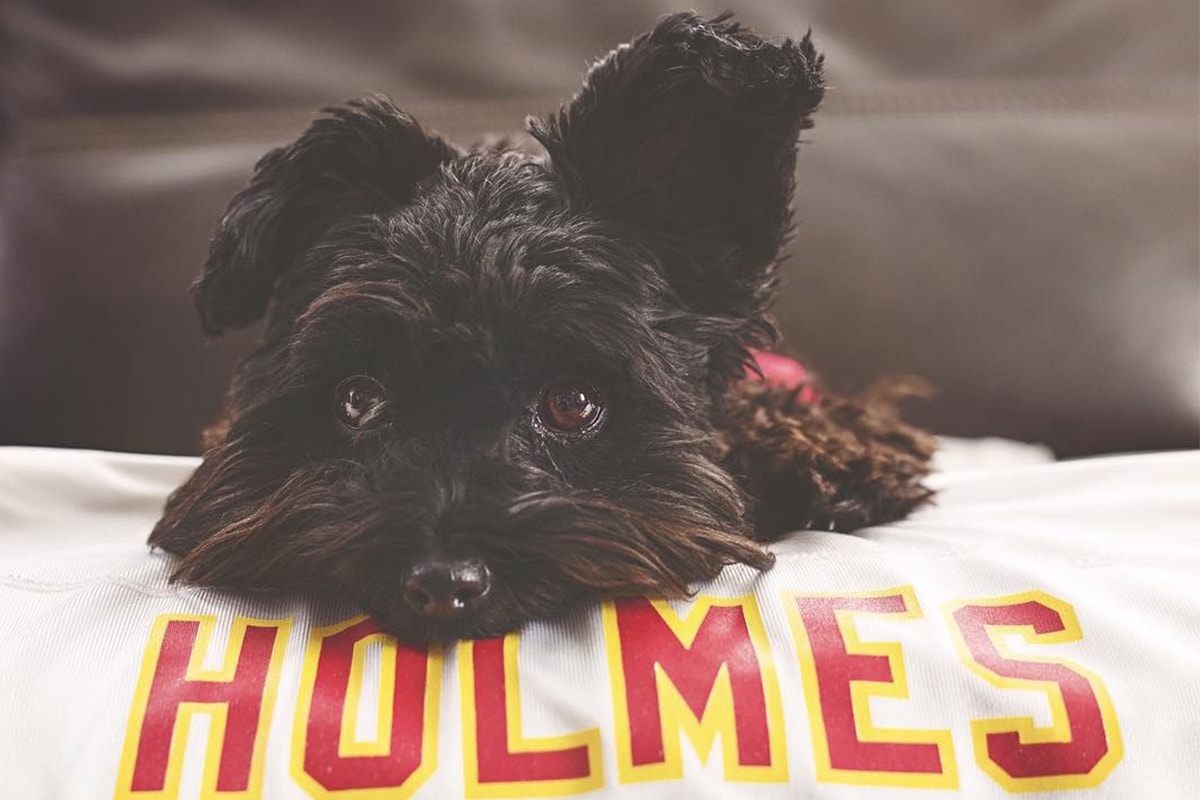 @addie_the_morkie via Instagram | Priest Holmes Off the Field Images | Exclusive Media Content